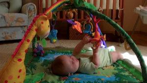Развивающие игрушки. Для детей от 0 до 1 года (16)
