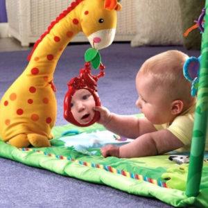 Развивающие игрушки. Для детей от 0 до 1 года (6)