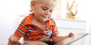 Развивающие игрушки. Книга своими руками для детского сада (2)