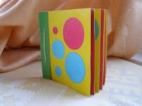 Развивающие игрушки. Книга своими руками для детского сада  (3)