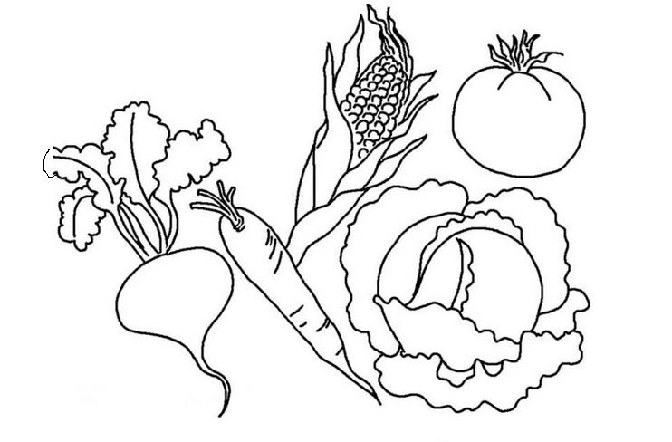 Раскраска для детей овощи распечатать бесплатно.