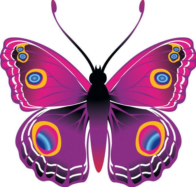 Бабочки рисованные цветные
