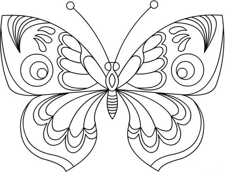 бабочка картинка для детей раскраска