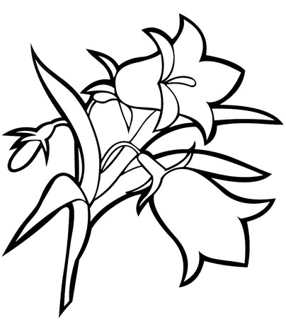 Распечатать цветы своими руками фото 27