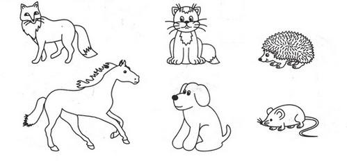 Красивые раскраски животных