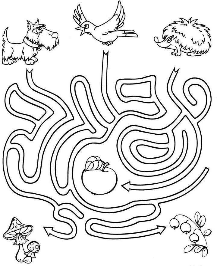 Раскраски для дошкольников с заданиями