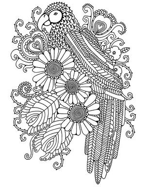Раскраски птицы (1)