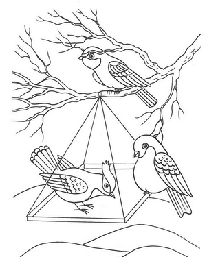 Раскраски птицы (10)