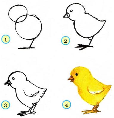 Раскраски птицы (14)