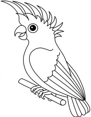 Раскраски птицы (15)