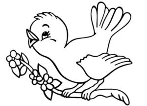Раскраски птицы (16)