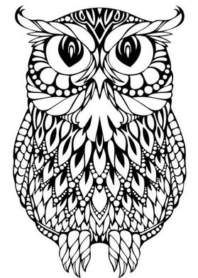 Раскраски птицы (3)