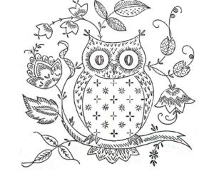 Раскраски птицы (4)