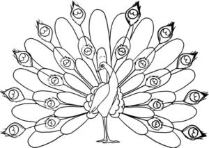 Раскраски птицы (42)