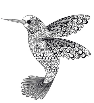 Раскраски птицы (43)