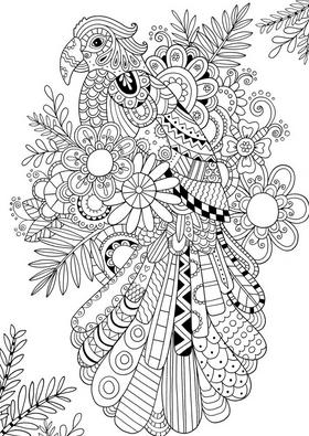 Раскраски птицы (44)