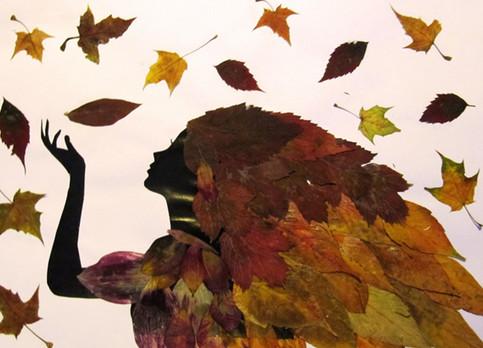 Теперь по дороге домой я собираю осенние листья и желуди... Увидев результат, ты станешь поступать так же!